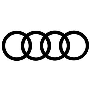 Árboles de transmisión Audi
